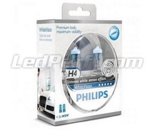 Pack mit 2 Lampen H4 Philips WhiteVision + 2 W5W WhiteVision (Neu!)