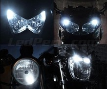 Standlicht-LED-Pack (Xenon-Weiß) für Can-Am RT Limited (2011 - 2014)